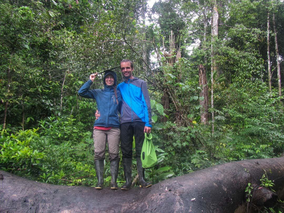 Amazonin sademetsässä