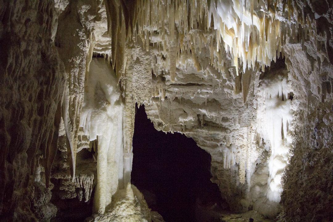 Aranui-luola, tippukiviluola, Waitomo, Uusi-Seelanti, Pohjoissaari