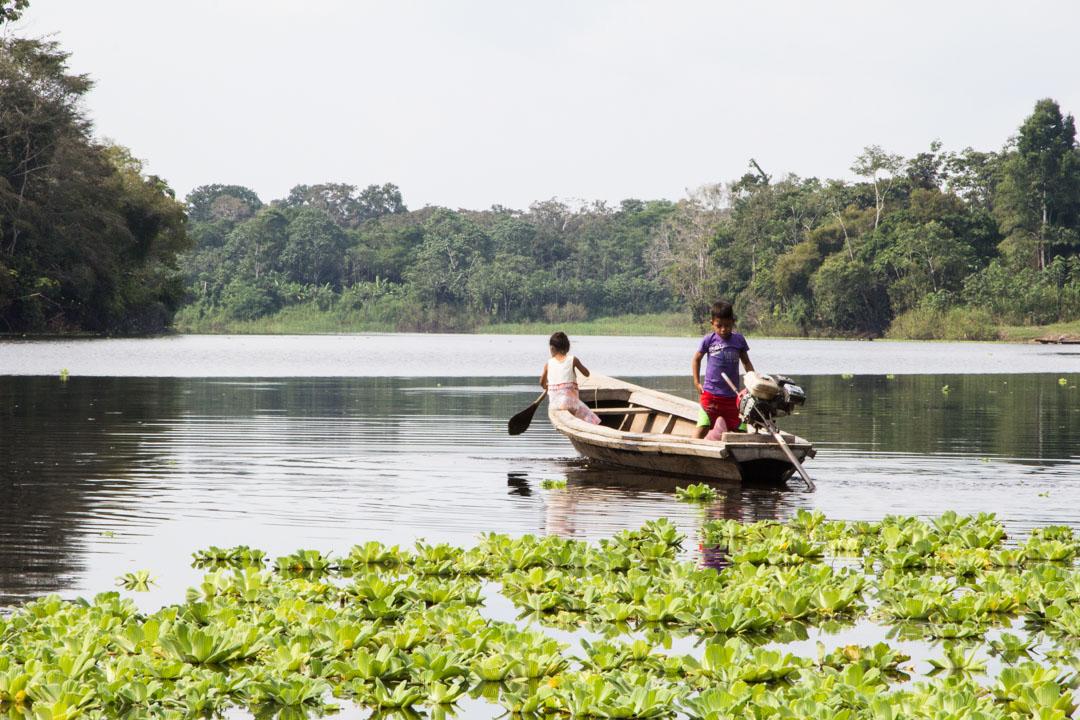 vene joella Amazonin sademetsässä