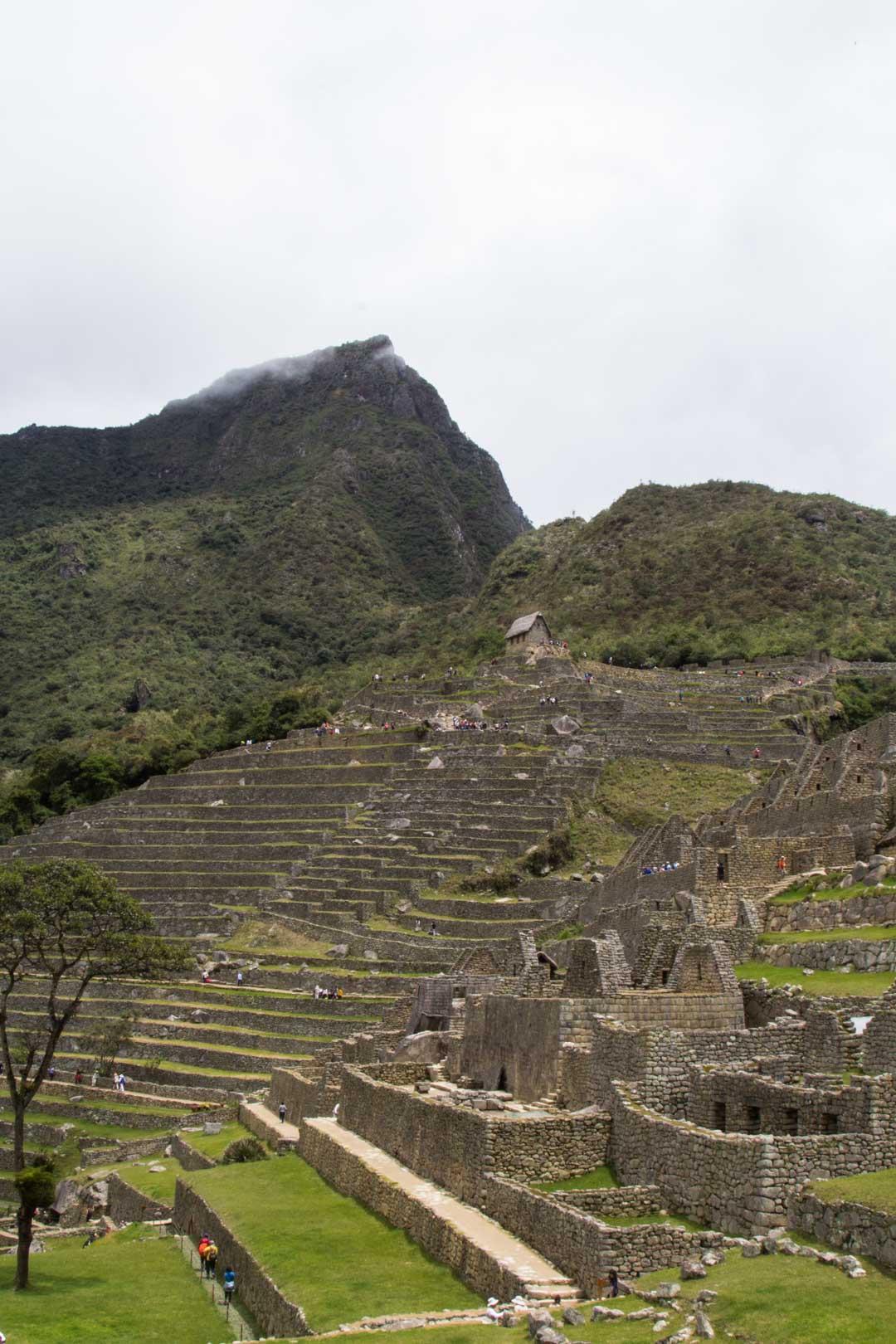 Machu Picchun inkakaupunki