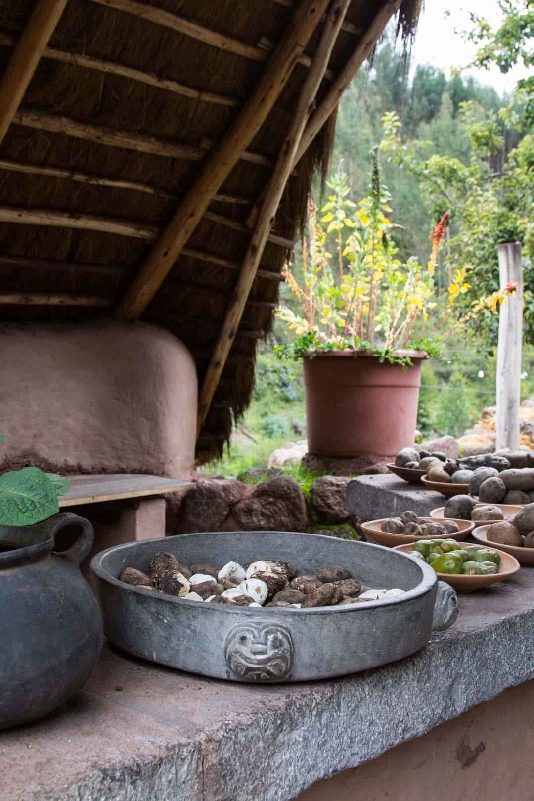 perunaa Perussa Pyhässä laaksossa lähellä Cuzcoa