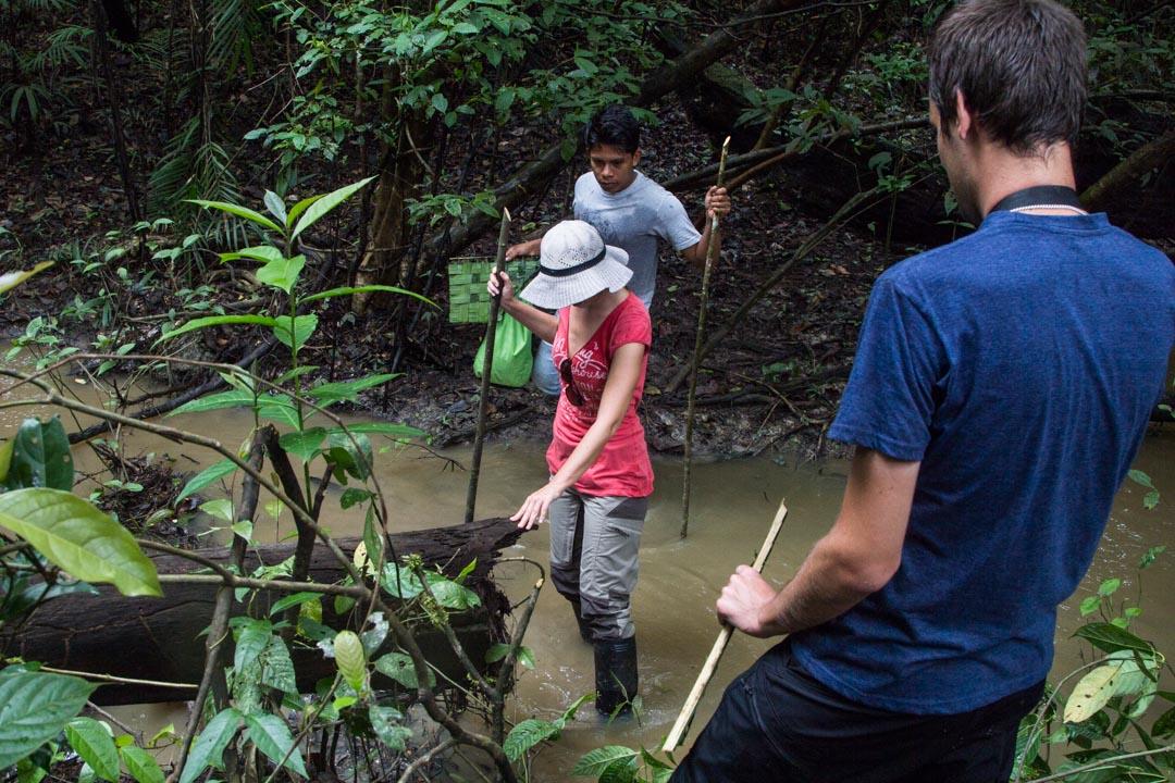 kävelyllä Amazonin sademetsässä Perussa