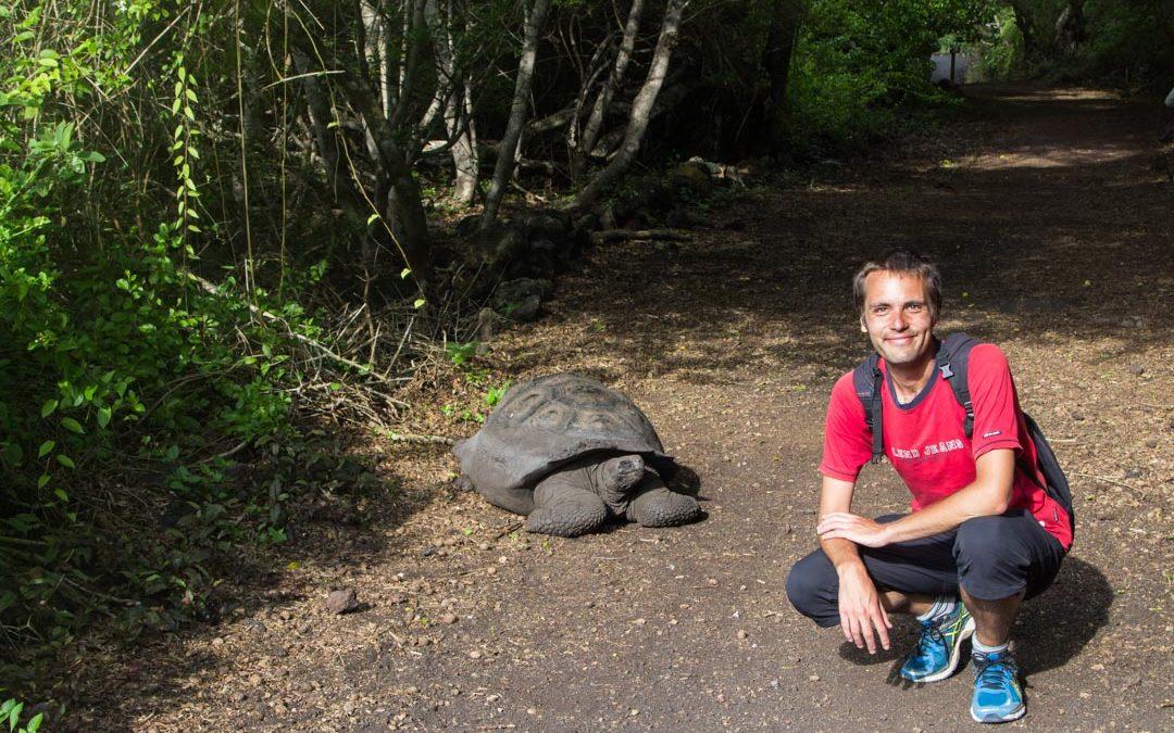 Galapagossaaret – jättiläiskilpikonnia Isabela-saarella