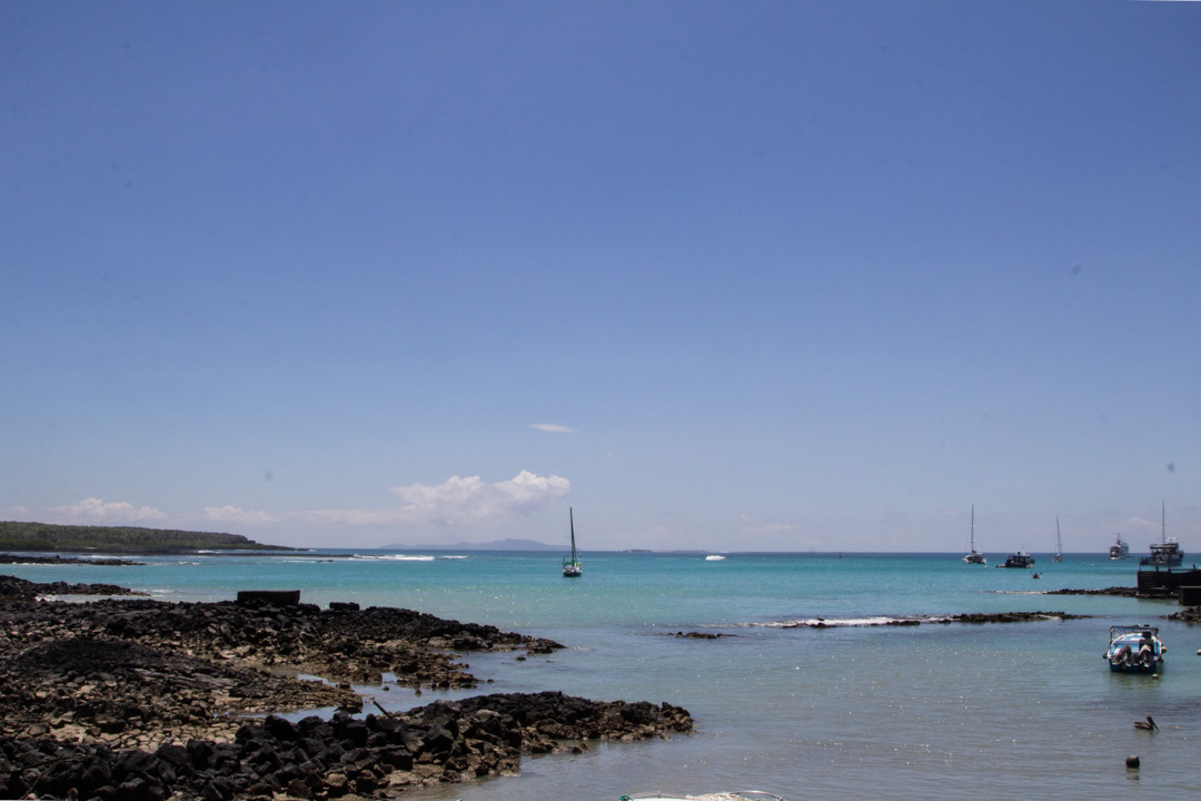 Puerto Ayoran satama Santa Cruz Galapagossaaret