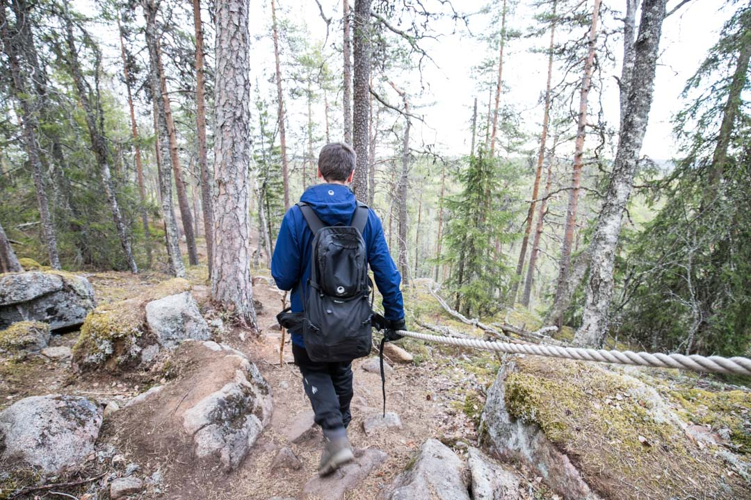 vaeltamassa Etelä-Konneveden kansallispuistossa, Kalajanvuorella