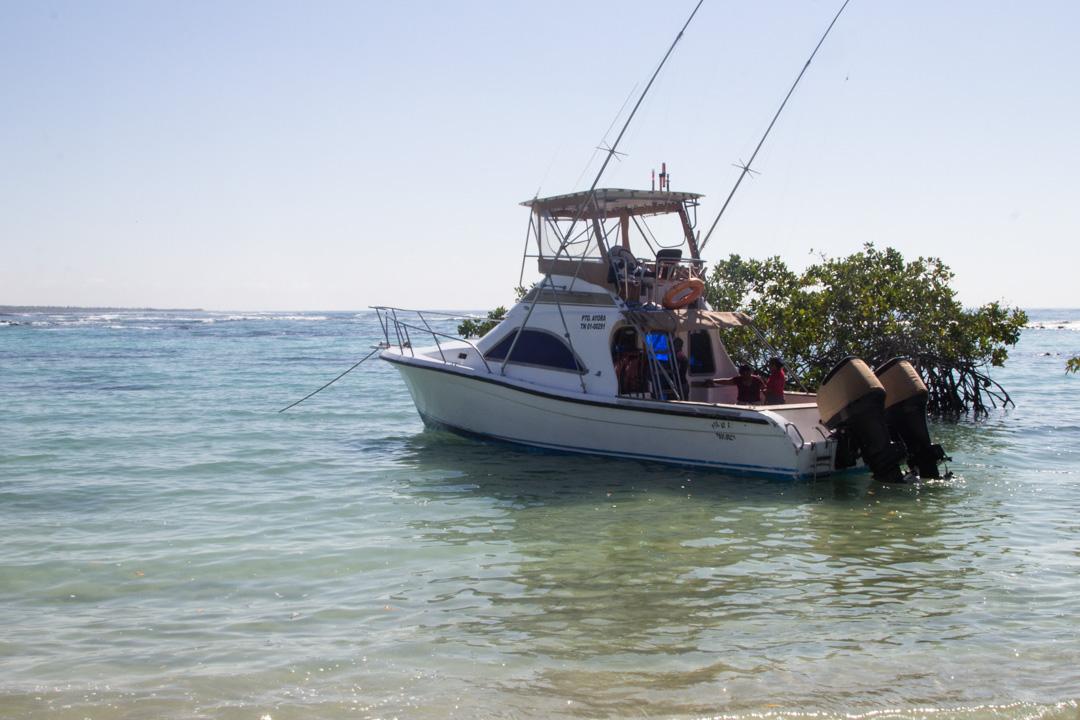 päiväretki Santa Fen saarelle Galapagossaarilla