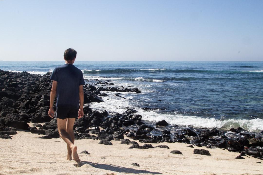 Santa Fen rannalla Galapagossaarilla