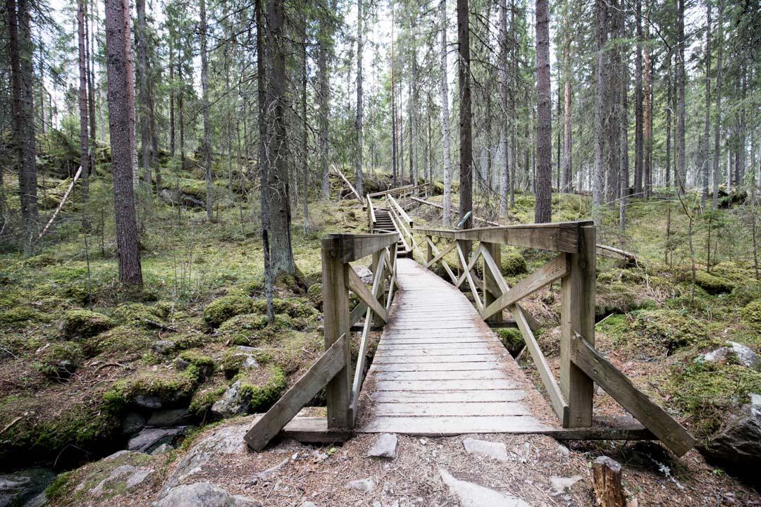 Helvetinjärven kansallispuisto Helvetistä itään reitti