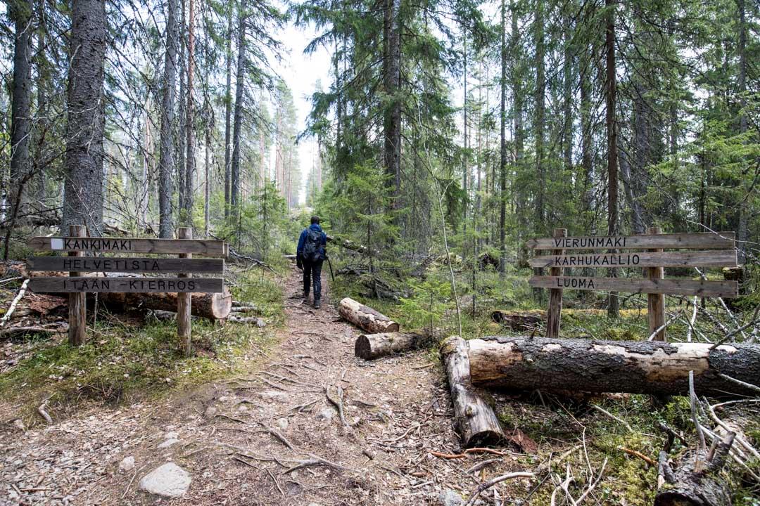 patikoimassa Luoman taukopaikalle Helvetinjärven kansallispuistossa
