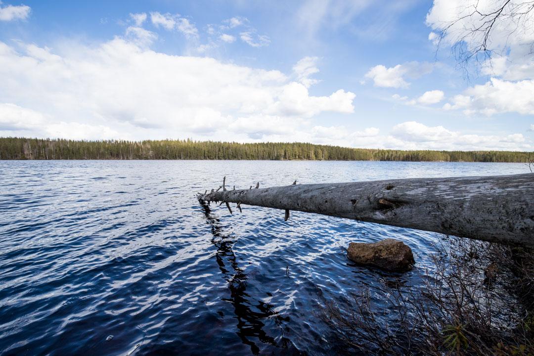Luomajärvi Helvetinjärven kansallispuistossa