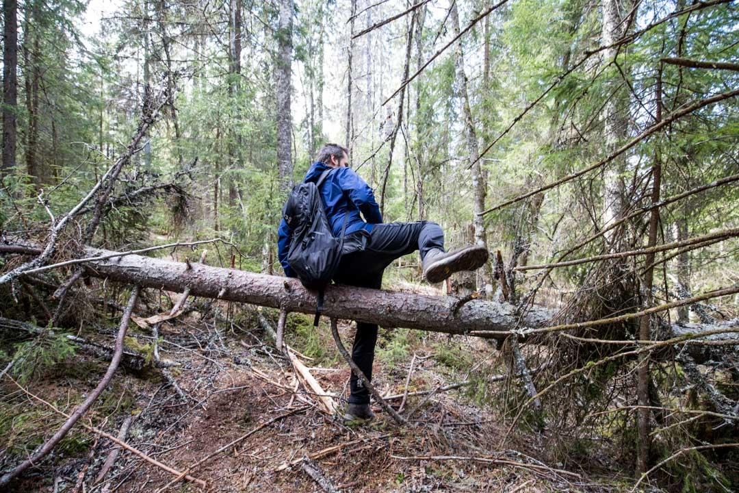 patikoimassa Helvetinjärven kansallispuistossa