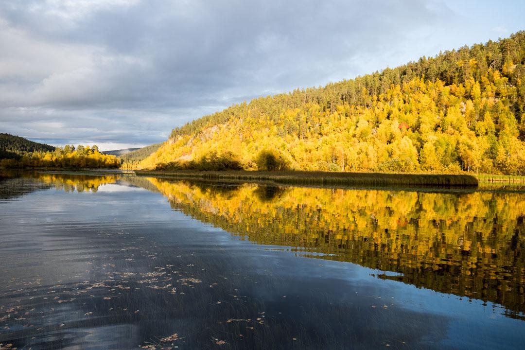 ruska-aikaan venekyydissä Lemmenjoen kansallispuistossa