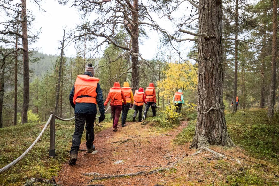 venekyydin kävelyosuus Lemmenjoen kansallispuistossa