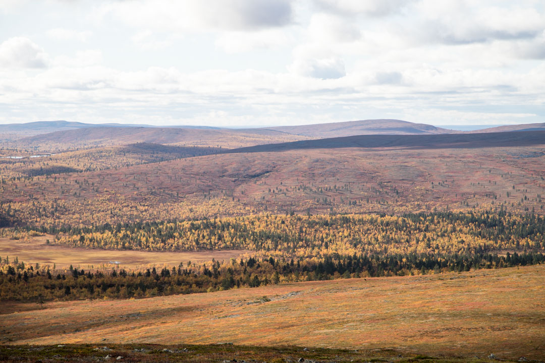 Lemmenjoen kansallispuisto