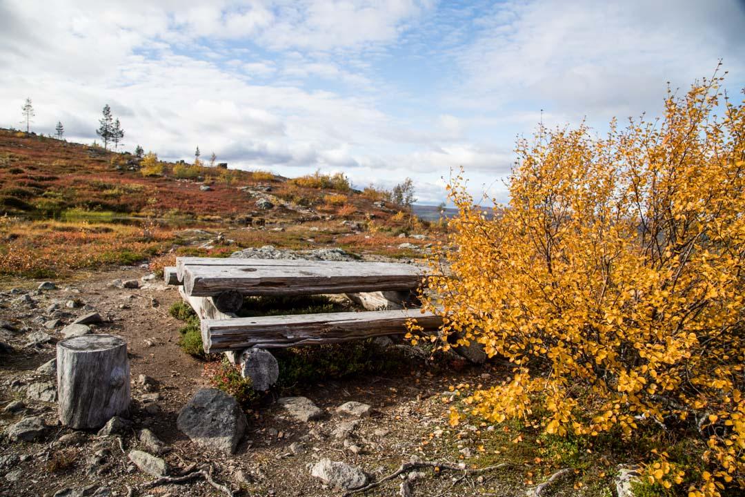 ruska-aikaan Lemmenjoen kansallispuistossa
