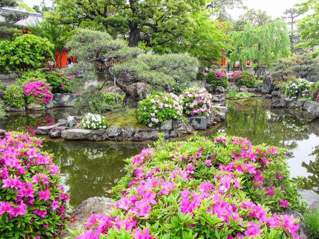 Sanjusangen-do temppelin puutarha Kiotossa Japanissa
