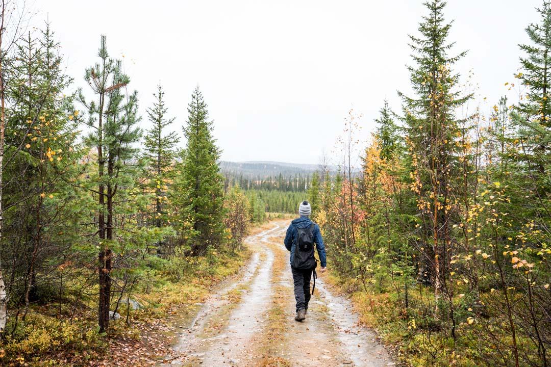 Rytivaaran kierros Syötteen kansallispuistossa