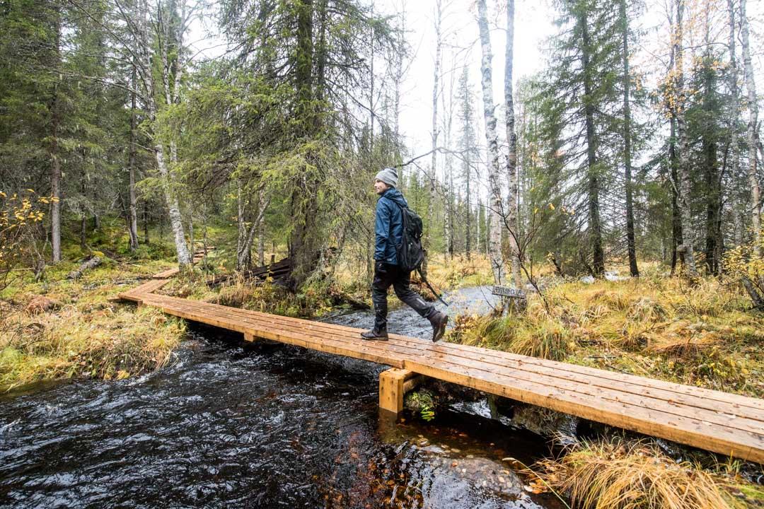 patikoimassa Rytivaaran kierroksella Syötteen kansallispuistossa