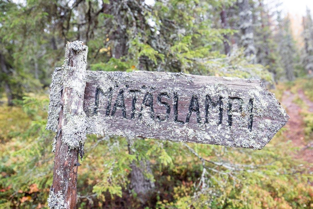 opaskyltti Syötteen kansallispuistossa Rytivaaran kierroksella