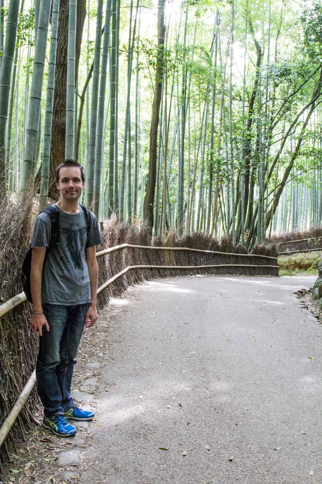 Arashiyaman bambumetsä Kiotossa Japanissa
