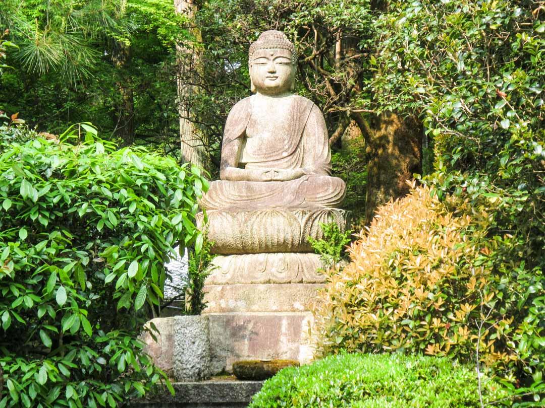 Ryoan-ji temppelin puutarhan yksityiskohta Kiotossa Japanissa