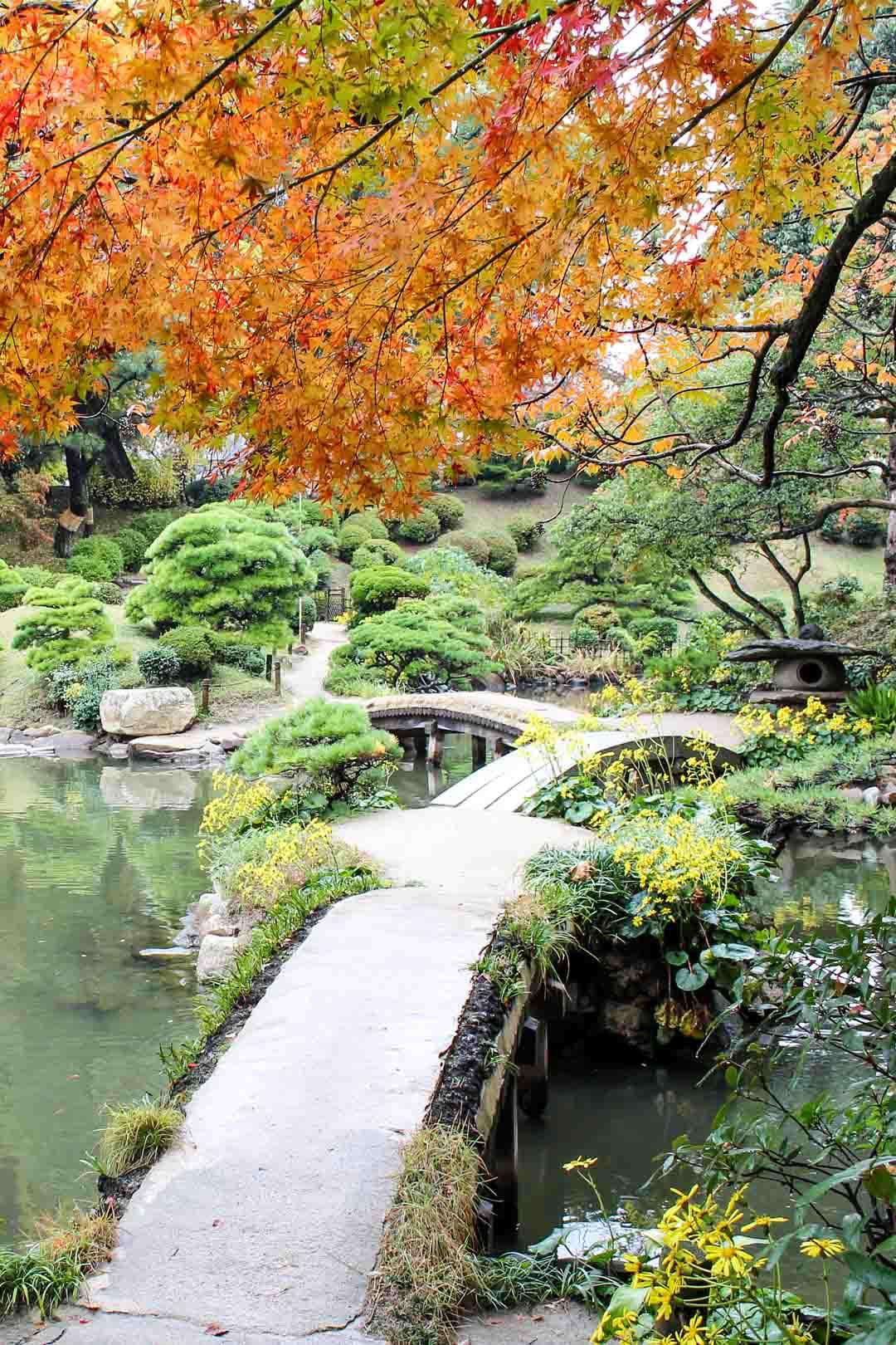 Shukkeien japanilainen puutarha Hiroshimassa Japanissa