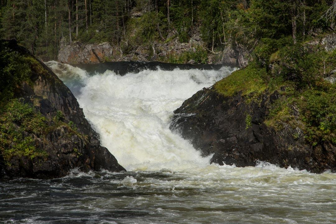 vesiputous Jyrävä Oulangan kansallispuistossa Pienen karhunkierroksen varrella