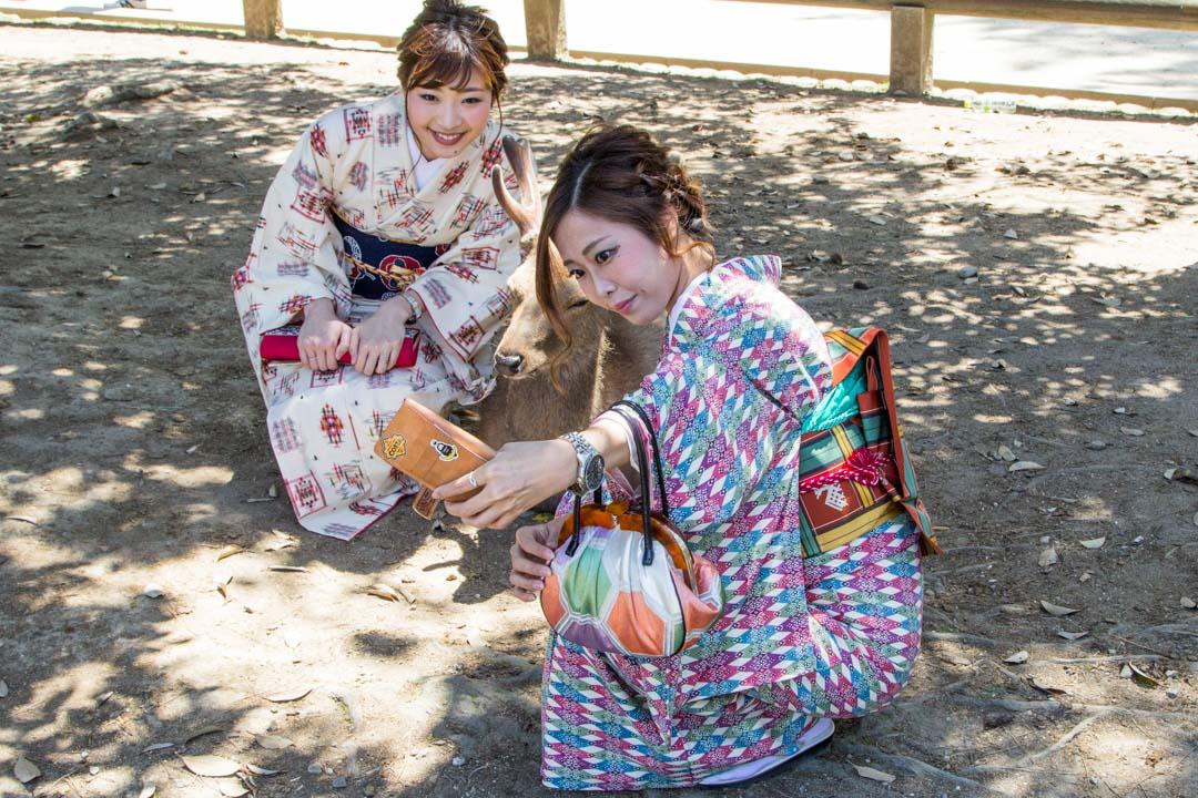 japaninpeuroja Narassa Japanissa