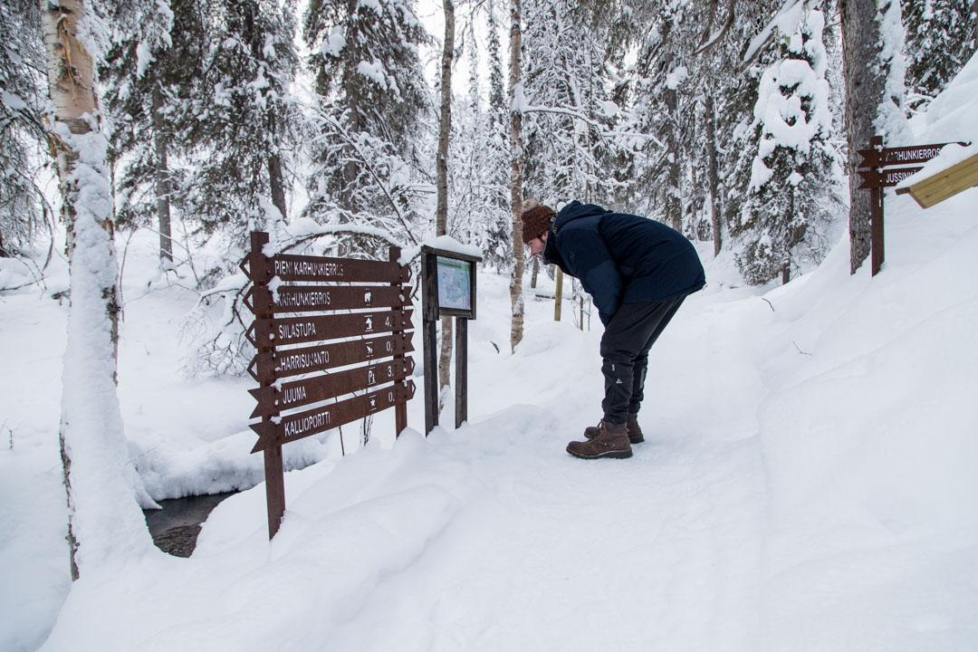 Pieni karhunkierros talvella Oulangan kansallispuistossa