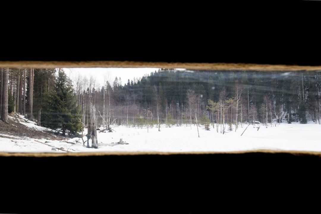 Erä-Eeron piilokoju ahman valokuvaukseen