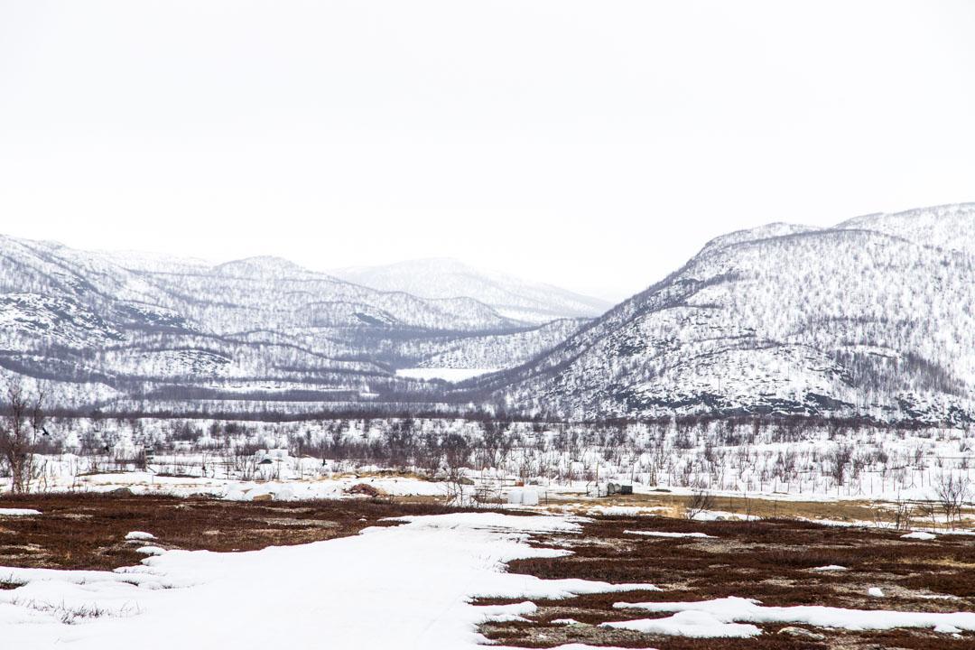 maisemat Aurorahut lasi-iglulta Nuorgamissa