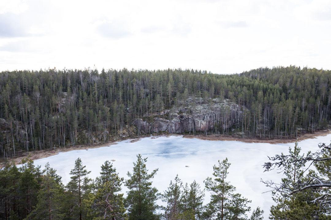 patikoimassa Repoveden kansallispuistossa