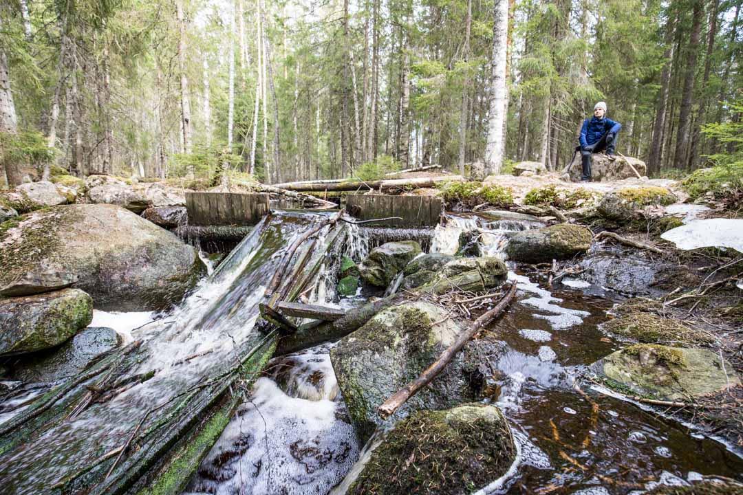 vanha mylly Virkatien varrella Seitsemisen kansallispuistossa
