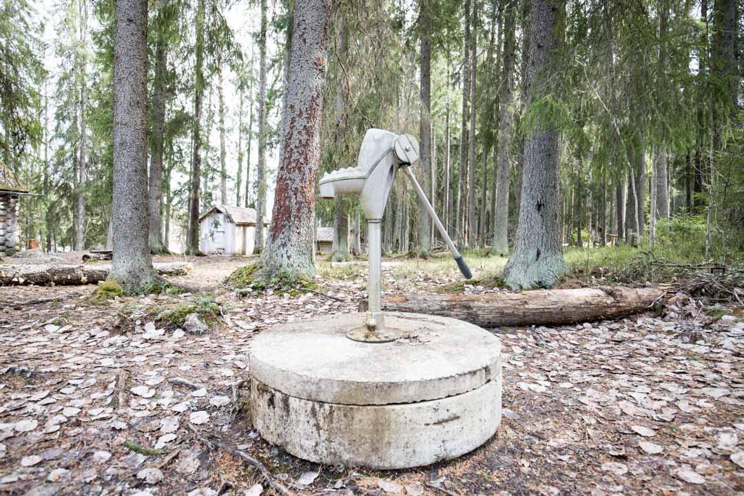 patikoimassa Virkatietä Seitsemisen kansallispuistossa