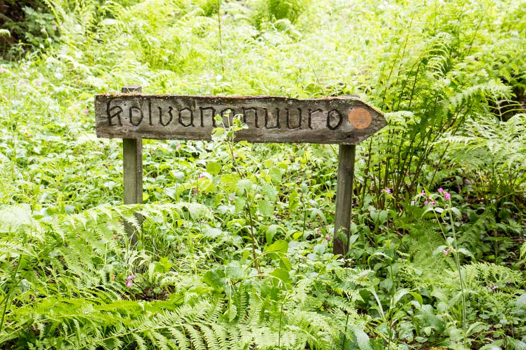 Kolvananuuron luontopolku Uuron reitti