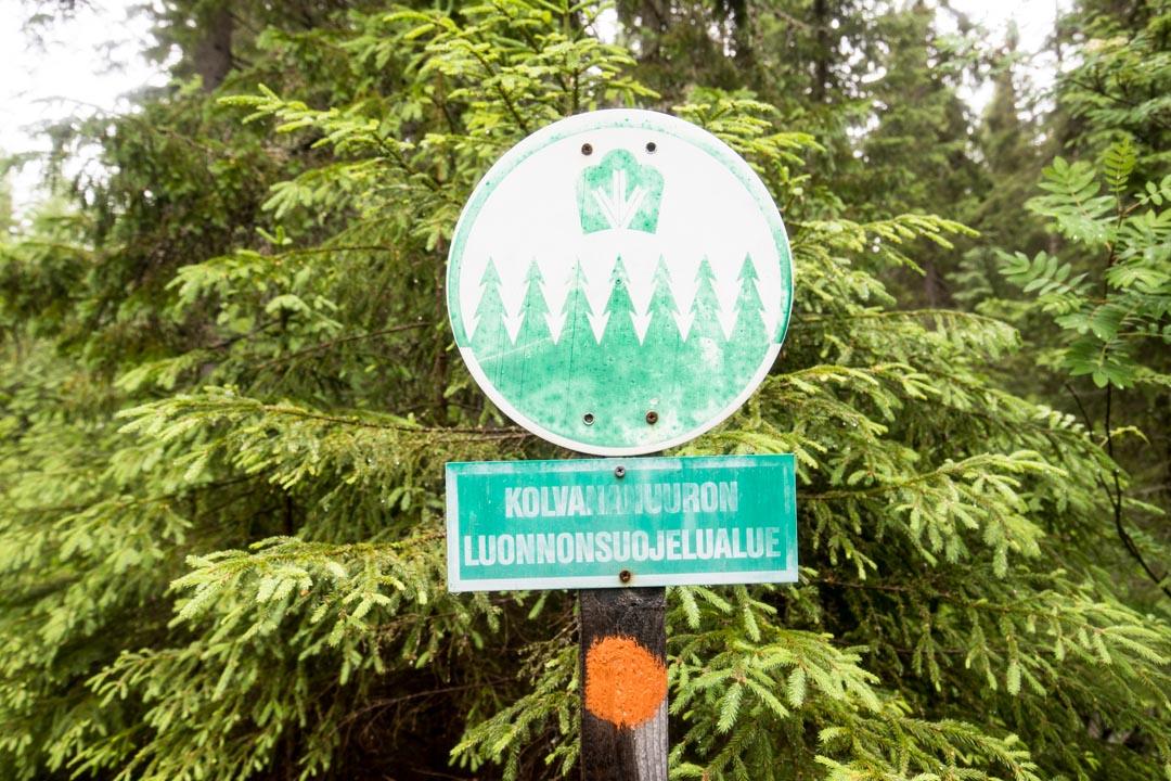 Kolvananuuron luonnonsuojelualue
