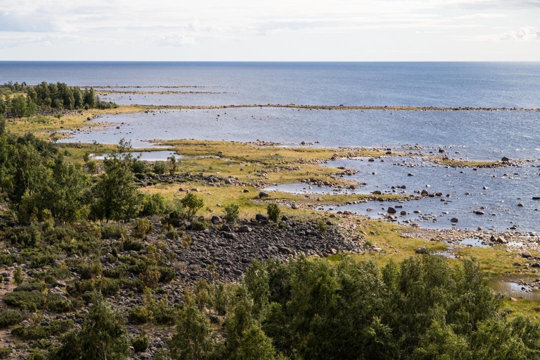 Perämeren kansallispuistossa Selkä-Sarven saaren maisemia näköalatornista kuvattuna
