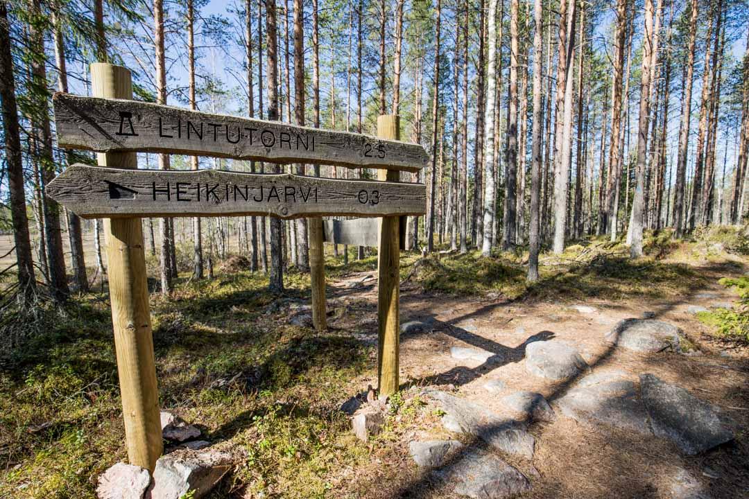 kyltti Heikinjärvennevan lintutornille Salamajärven kansallispuistossa