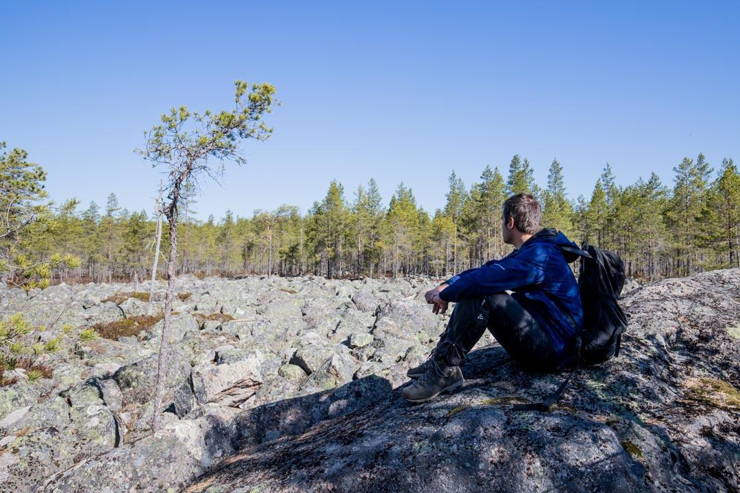 pirunpelto Salamajärven kansallispuistossa