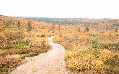 Urho Kekkosen kansallispuisto – Ahopään polku