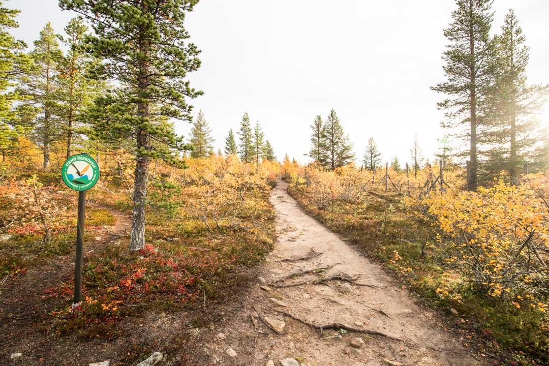 Ahopään polku Urho Kekkosen kansallispuistossa syysruskan aikaan