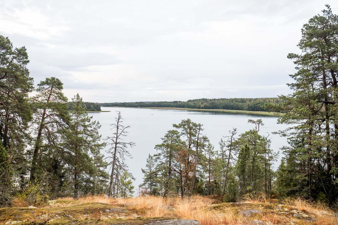 Dagmarin puisto ja historiallisen polun näköalapaikka
