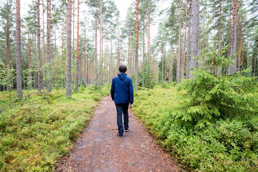Dagmarin puisto ja historiallinen polku