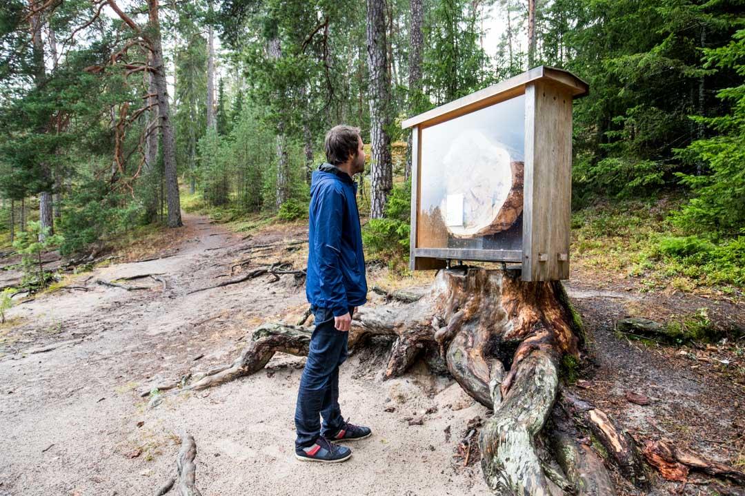 Dagmarin puiston nähtävyys