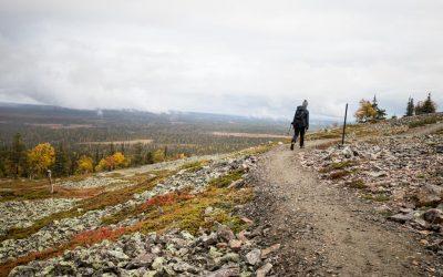 Pallas-Yllästunturin kansallispuisto – Kiirunankiepppi