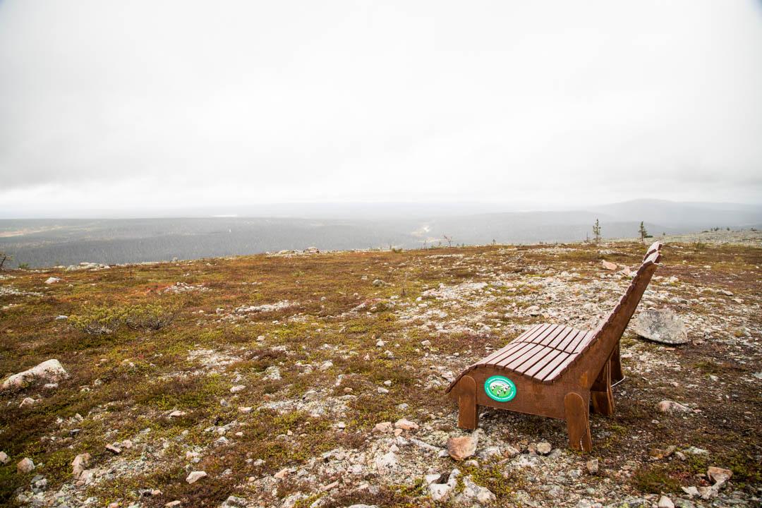 penkki Kukastunturin huipulla Pallas-Yllästunturin kansallispuistossa