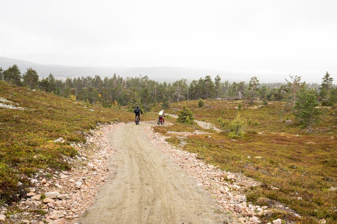 maastopyöräilijöitä Kukastunturin kierroksella Pallas-Yllästunturin kansallispuistossa