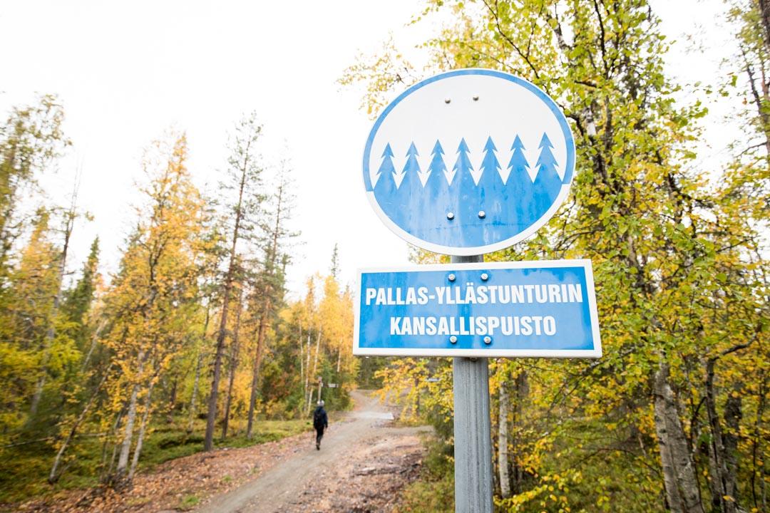 Pallas-Yllästunturin kansallispuistoll