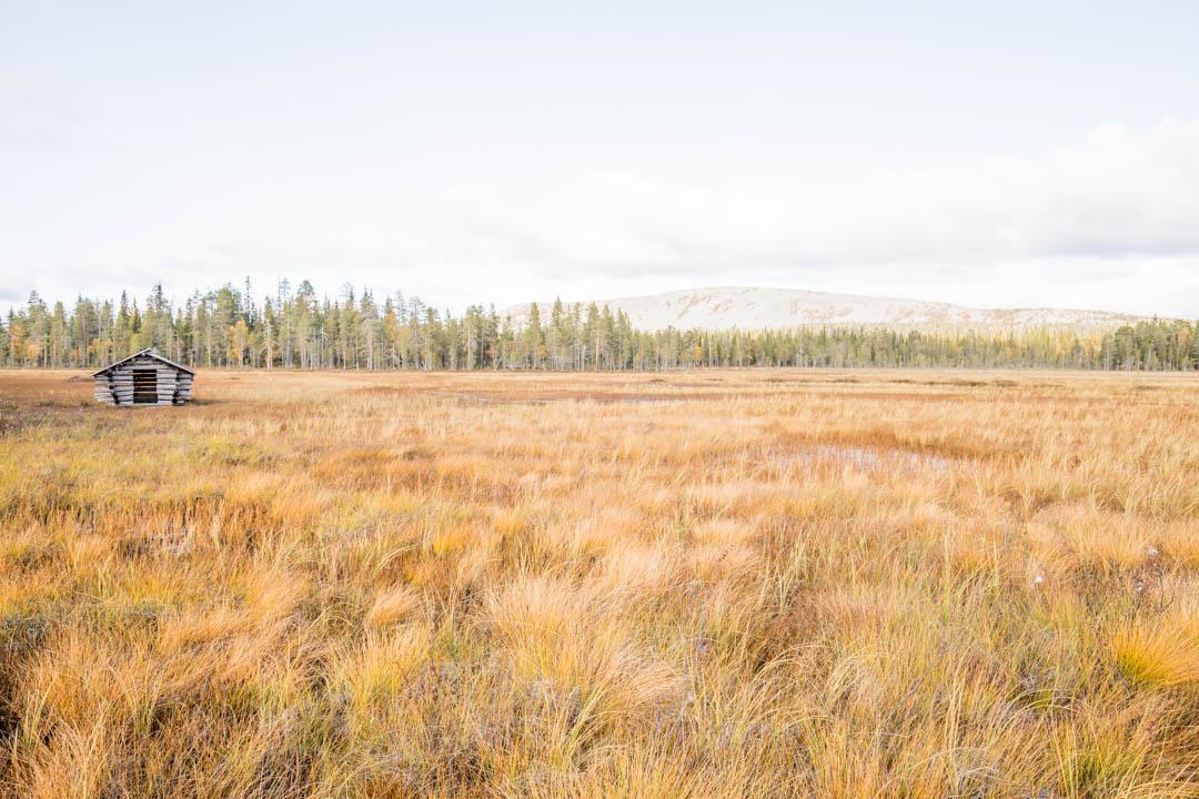 suomaisemaa Luoston vaellusluontopolulla Pyhä-Luoston kansallispuistossa