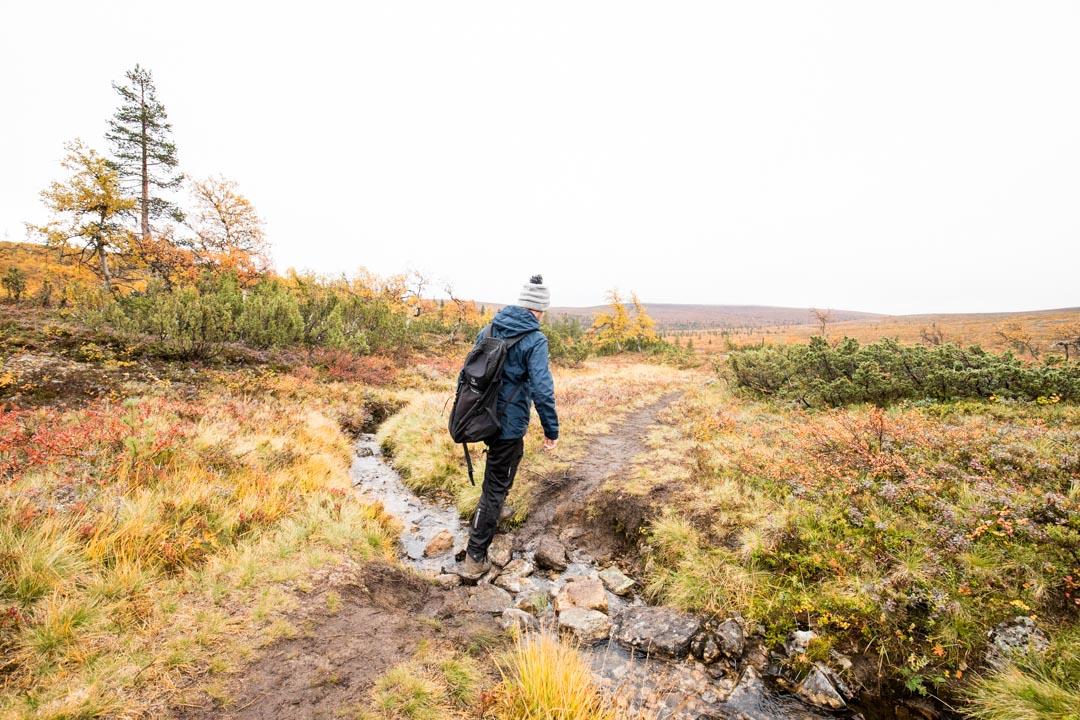 Luulammen polku Urho Kekkosen kansallispuistossa